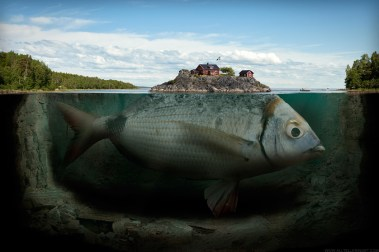 Fishy island ©Erik Johansson