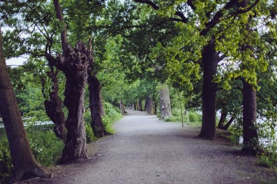 Auch in Braunschweig gibt es Natur