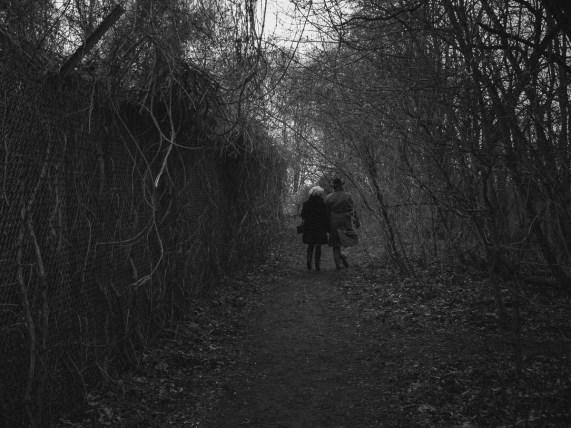 Spaziergang durch den Grunewald