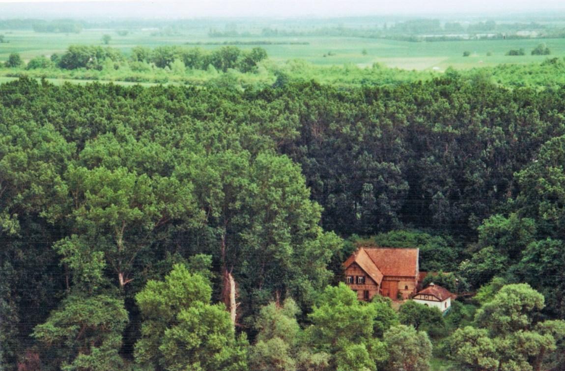 Weinwanderung in der Pfalz