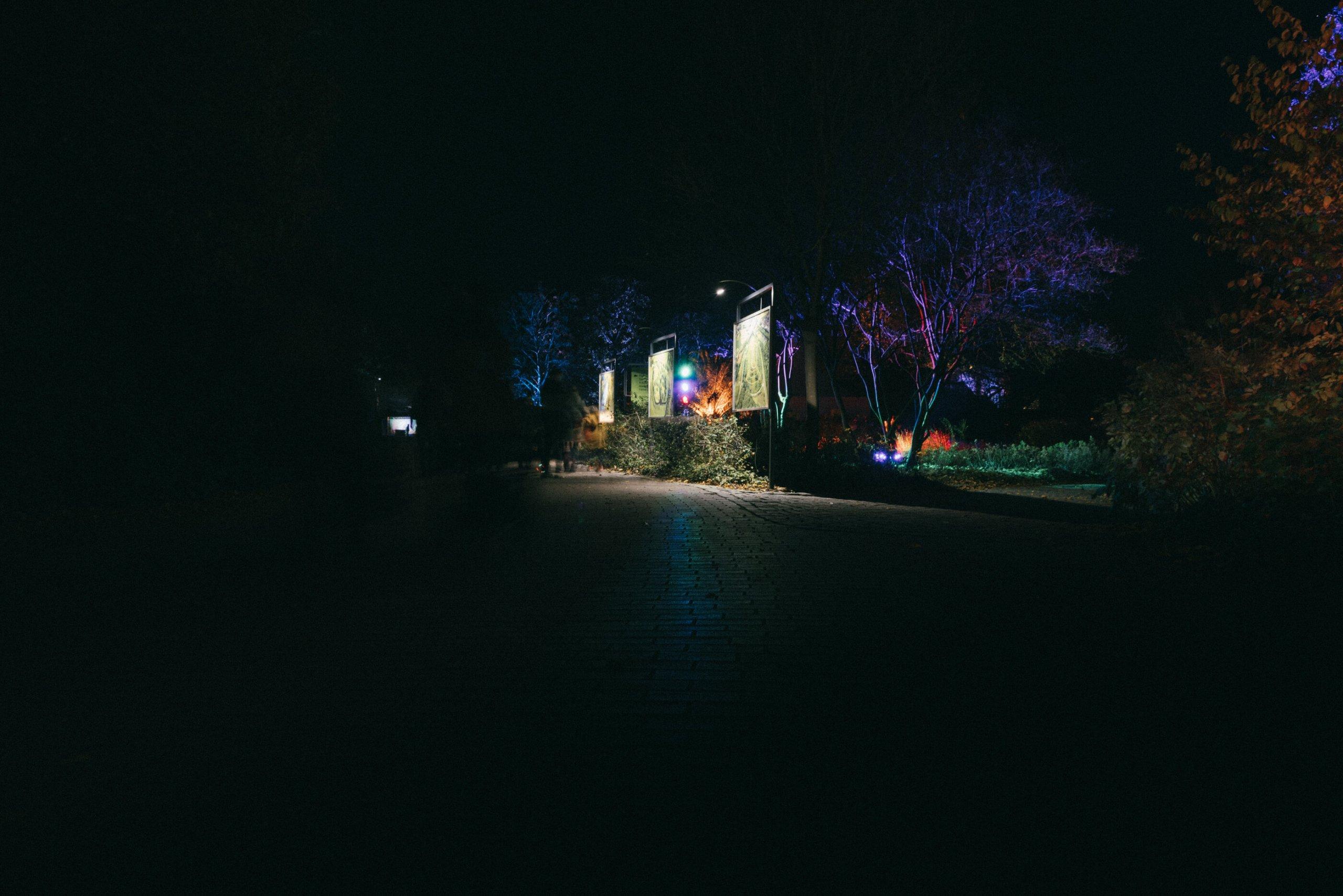 Herbstleuchten im Maxipark Hamm