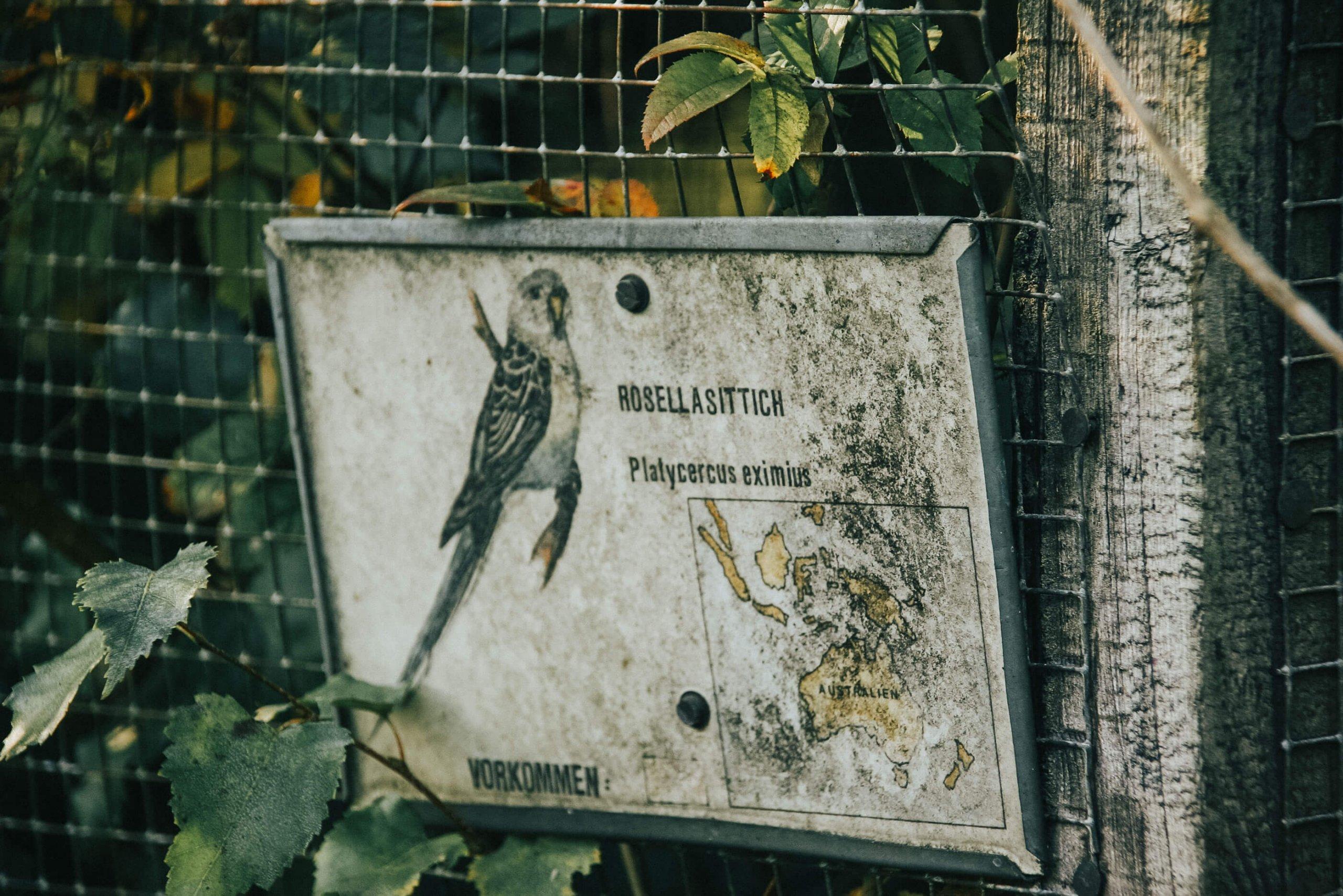 Vogelpark Dehme