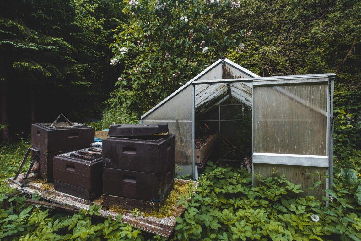 Bienenstöcke, Schallplatten und Reinigungsmittel