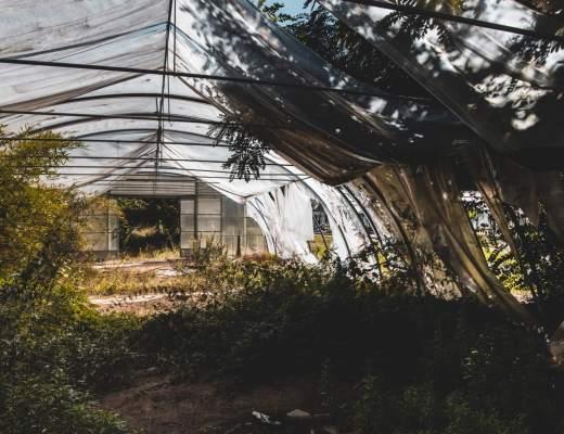 Die verlassene Gärtnerei