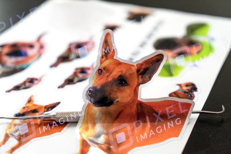 Sticker sheets Calgary: A sheet of custom stickers featuring a pet dog.