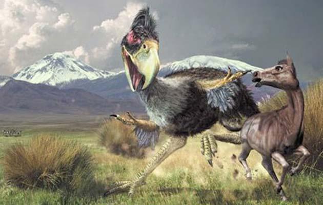 Terror-ptica1
