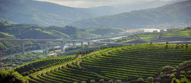 Dolina-Douro-6