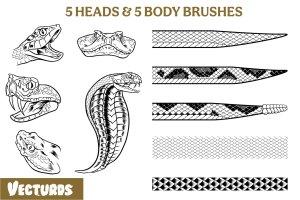 vecturds, snakes, snake pack, rattle snake, cobra, snake brushes