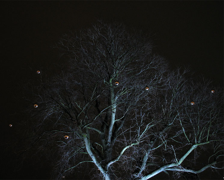Magic tree in Gothenburg