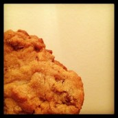 06.23 - Last. The last of the chocolate chip cookies. *sniffle*