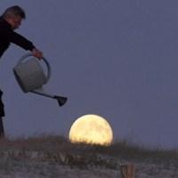 Le Croissant de #Lune …