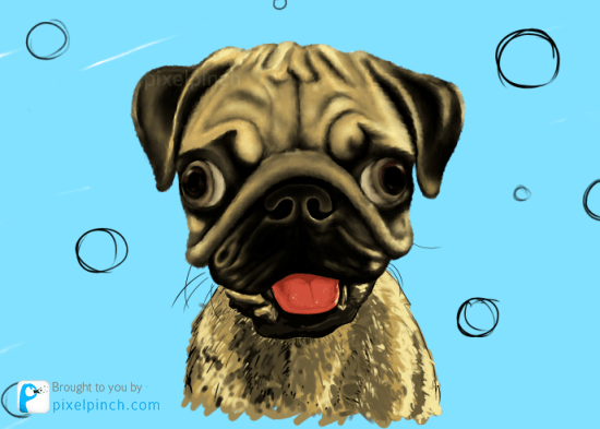 Step 13 Digital Art Dog Pug PixelPinch
