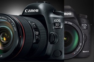 Canon 5D Mark IV vs 5D Mark III