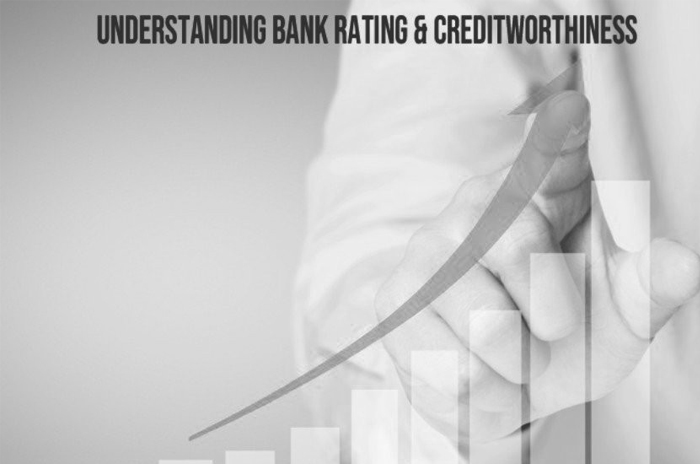 The Ratios for Understanding Bank Rating and Creditworthiness
