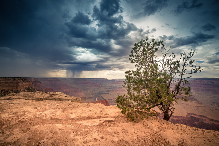 Grand Canyon Version Jens Kroen