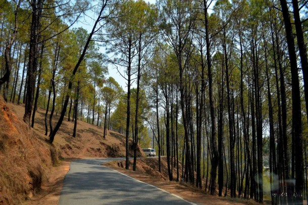 On the road to Kausani