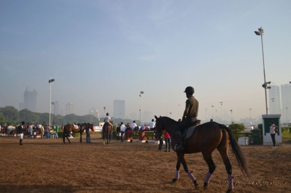 At races for the Amateur Riders Club at Mumbai's Mahalaxmi Race Course