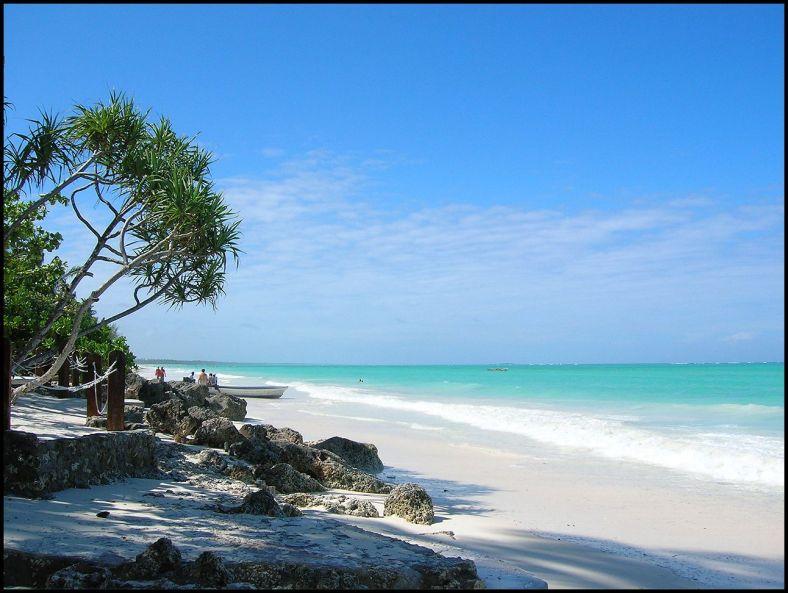 Zanzibar beach. Image credit - AfricaSafariExperience.com