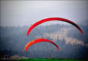 Paragliders dip below the horizon at Saputara