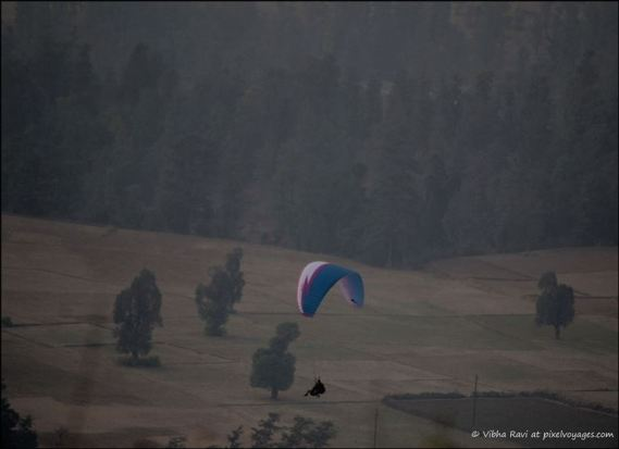 Paraglider landing in Saputara valley