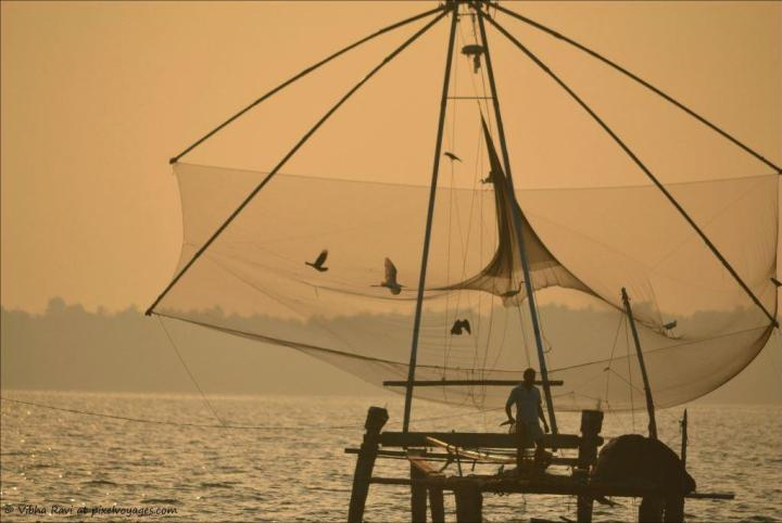 Chinese fishing net Ashtamudi Lake at sunrise
