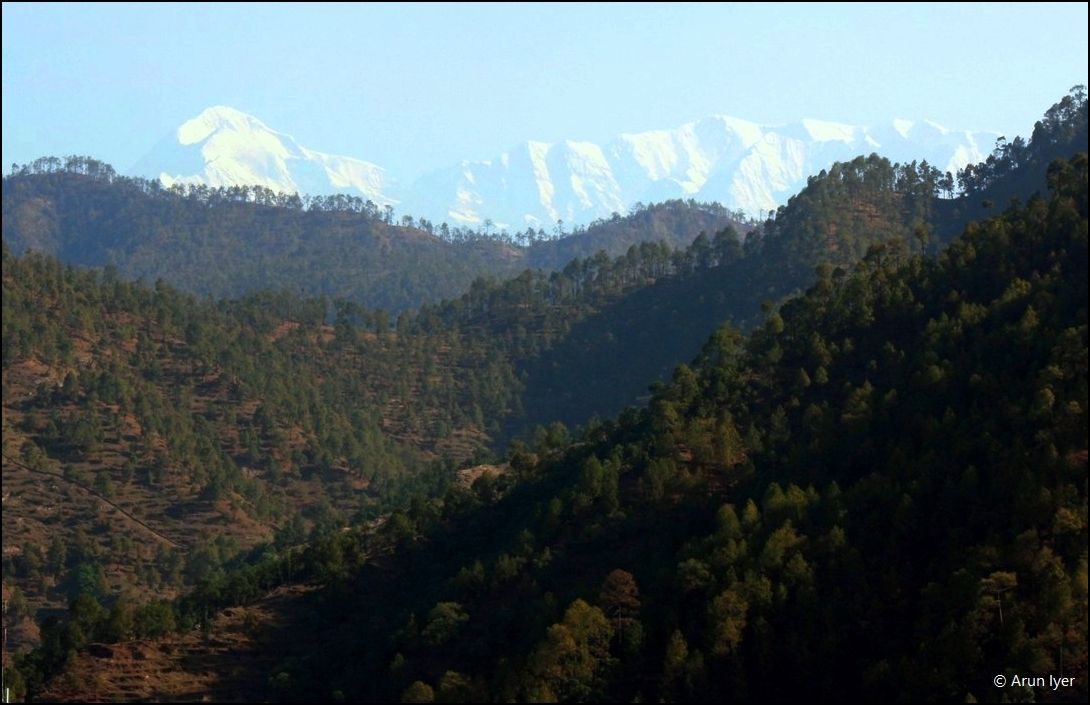 Snow-capped mountains behind the hills in Kumaon