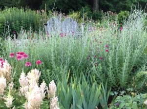 Back ledge garden - pixie perennials@gmail.com