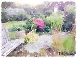 Backyard garden - September 2014 - pixieperennials.com#Waterlogue