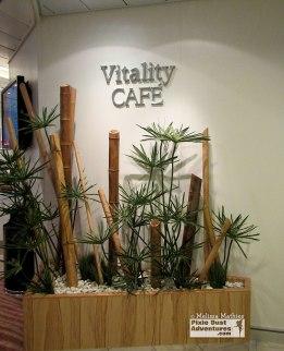 vitality-spa-1