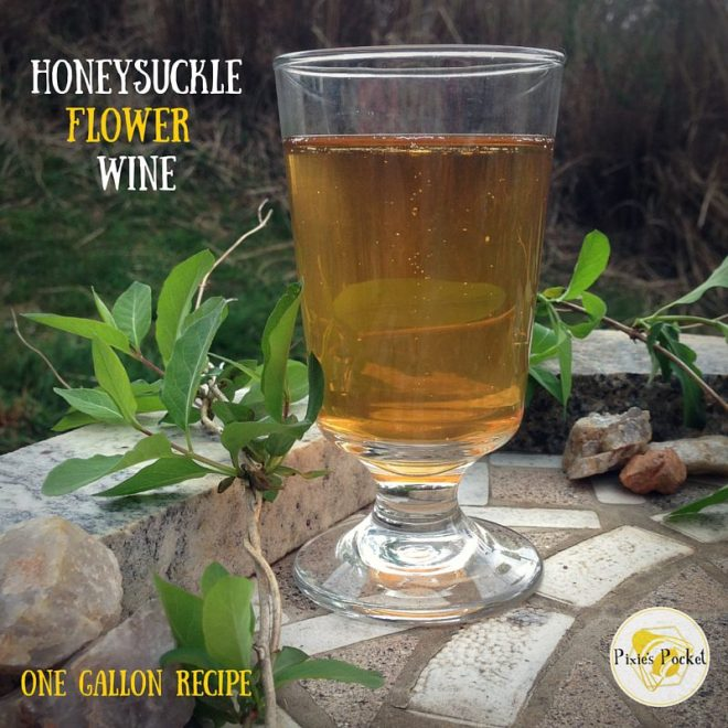 Honeysuckle Wine: one gallon recipe from pixiespocket.com