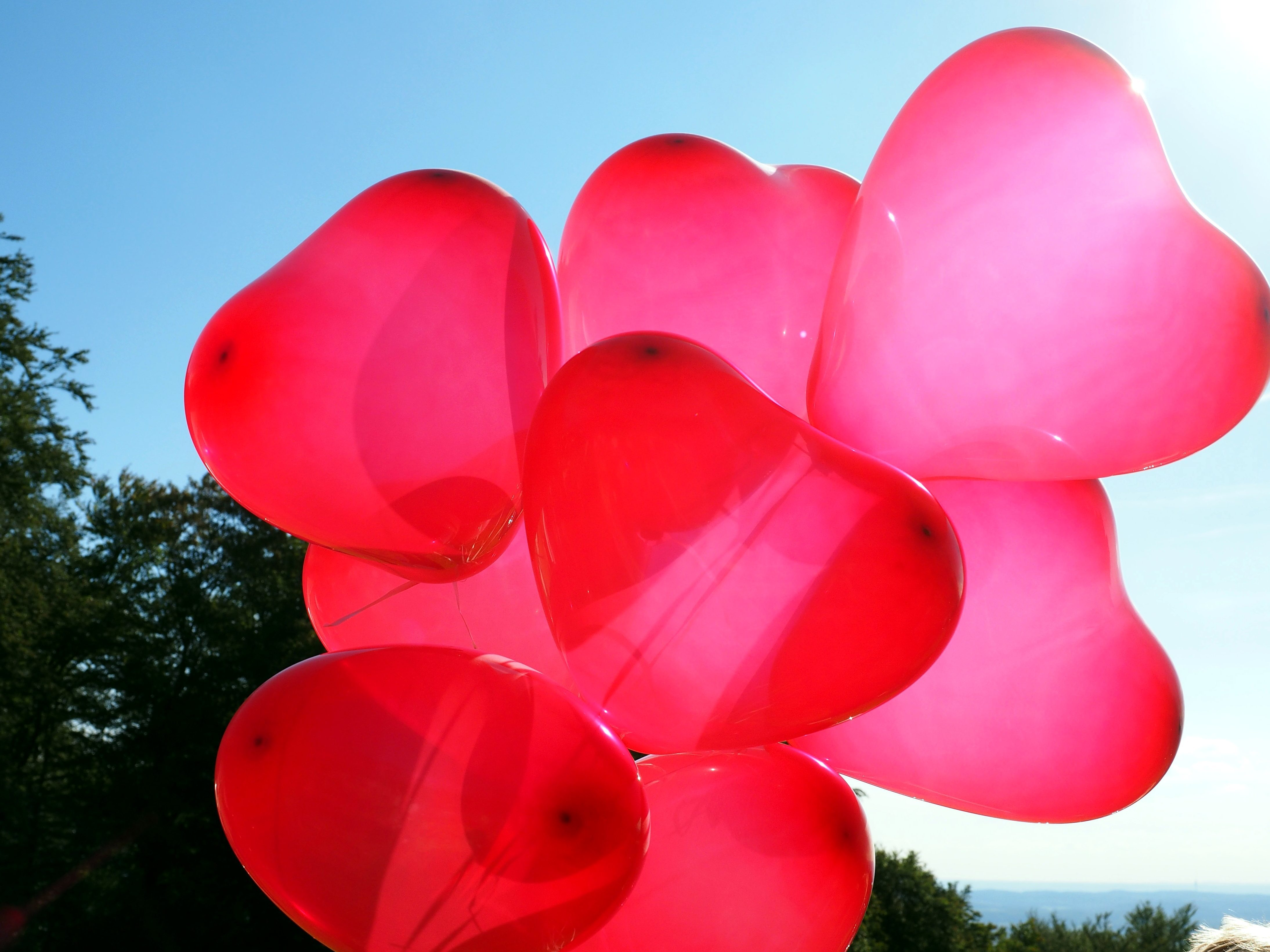 Free Picture Red Hearts Balloons