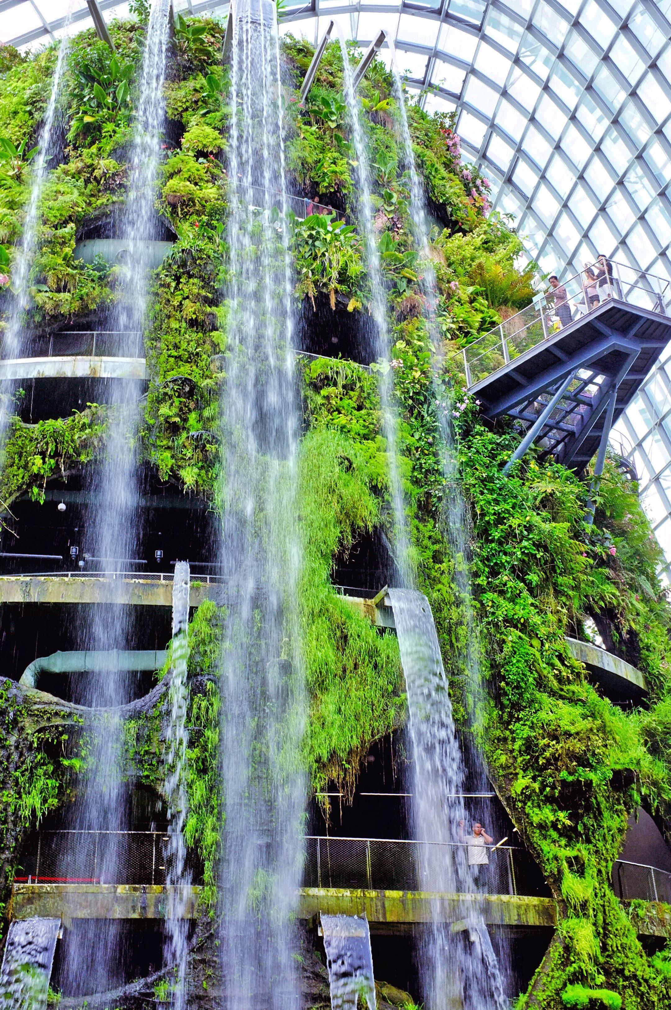 Free Picture Waterfalls Flora Botanical Garden