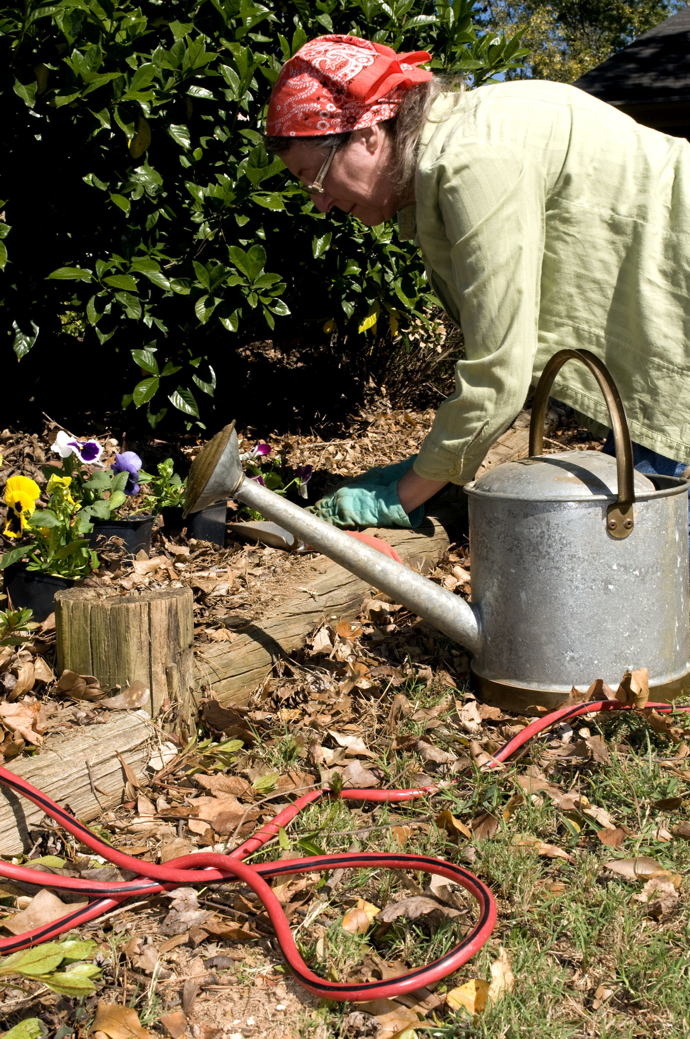 Free Picture Gardening Woman Outdoors Sunny Day Work
