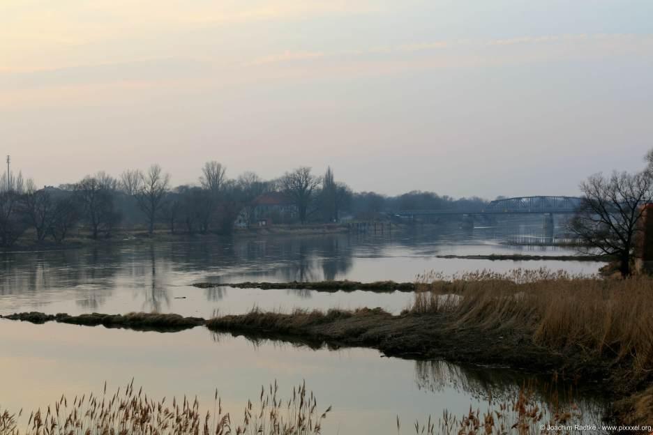 an der Oder, im Hintergrund die Brücke