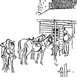 Horse Farm Drawing Free Image
