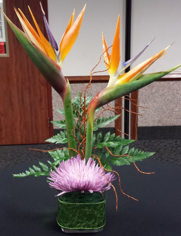Birds of Paradise with Spider Mum