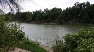 Near the Rio Grande River