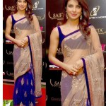 Indian Bollywood Priyanka Chopra Net Velvet Saree Bollywood Replica Saree Collections Piyani Collections