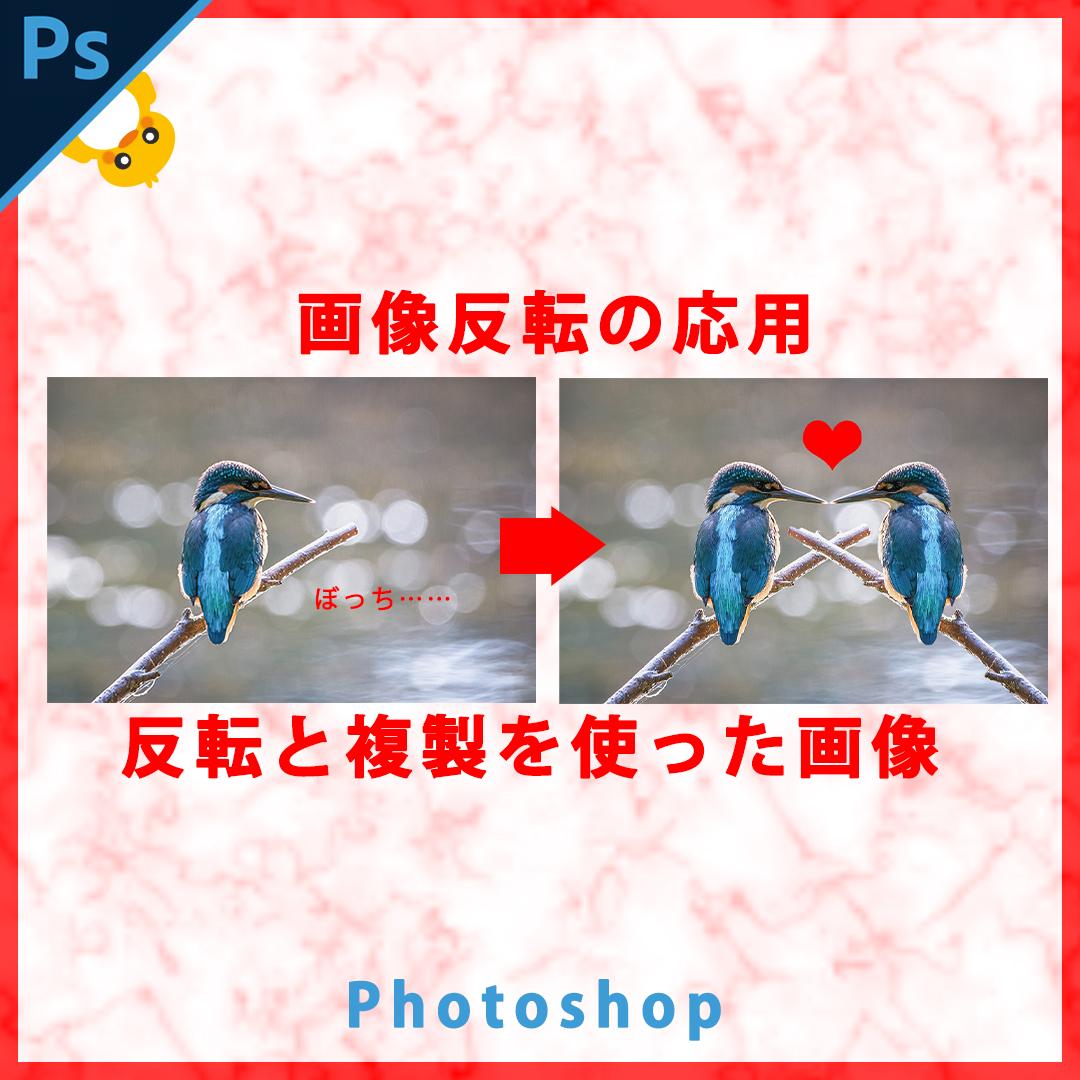 Photoshop画像の反転応用(反転と複製を使った画像)