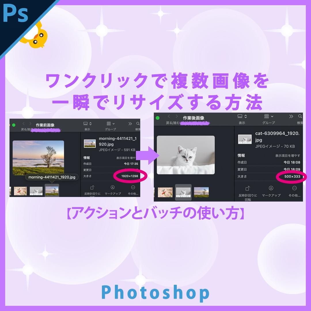 Photoshopワンクリックで複数画像を同じサイズにリサイズする方法【アクションとバッチの使い方】
