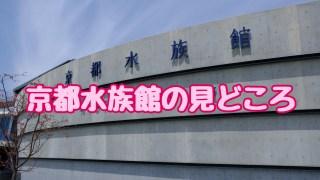 京都水族館の見どころ
