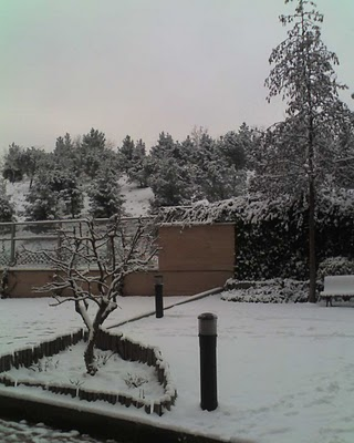 Madrid nevado 2