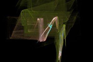 """<h3> Apophysis: Galería de imágenes fractales</h3>    <a href=""""https://piziadas.com/2011/09/apophysis-galeria-de-imagenes.html"""">Apophysis-110911-77</a>"""