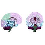 Cerebro II