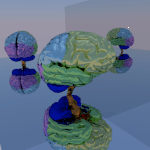 brain_cycles_150