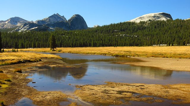 Rounded Fairview Dome from the lower end of Tuolumne Meadows - on the right is Pothole Dome. These domes and everything around here, were formed by glaciers aided by gravity.