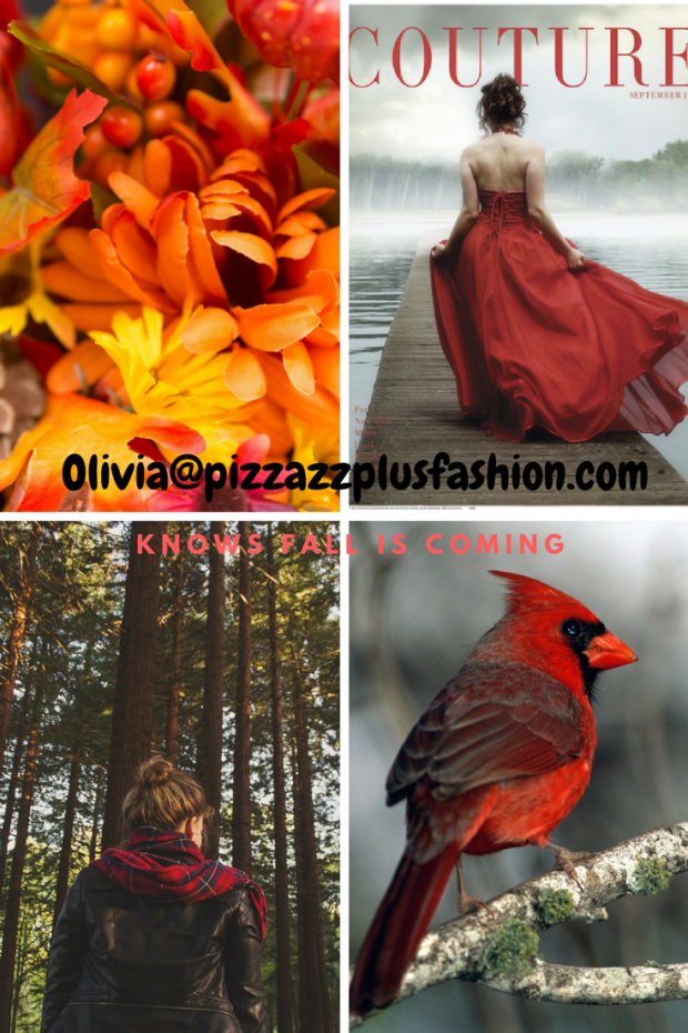 fall fashions, dressing to keep warm, cuddle time with clothes