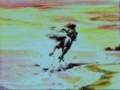 Oscar_a_cavallo_09_jpg