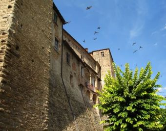 monasterobormida