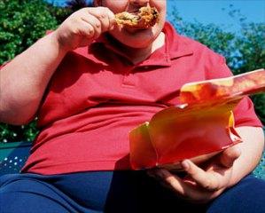 fat eating junk